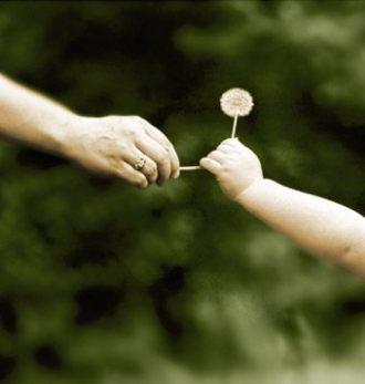 Fericirea de a darui